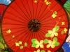 myo-myint-aung-flowers_1