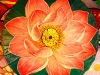 myo-myint-aung-lotus-flower_1